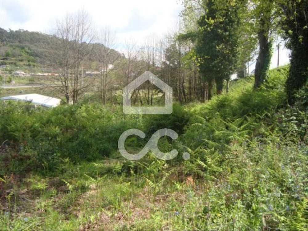 Lordelo Guimarães terrain picture 77423