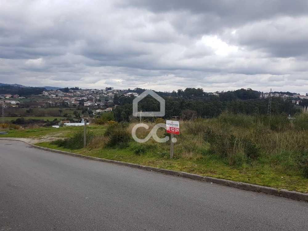 Arreigada Paços De Ferreira terrain picture 78028