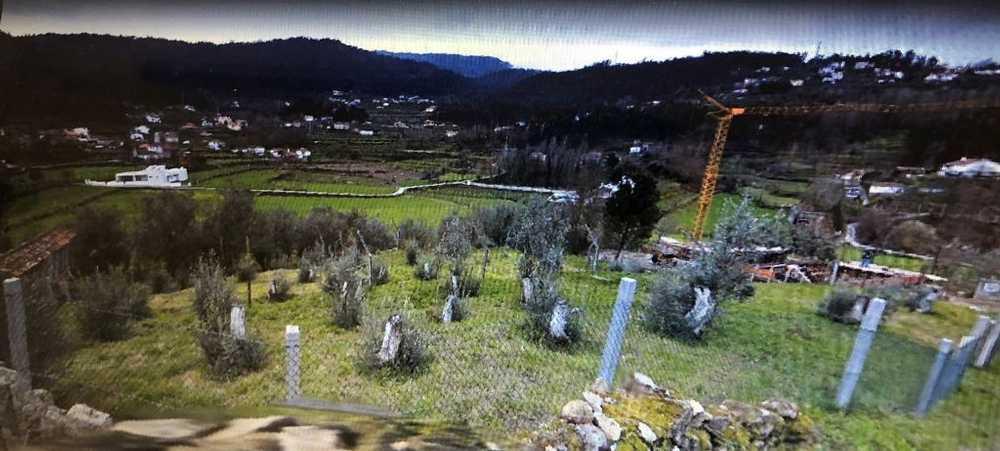 Boavista Tarouca terreno foto #request.properties.id#