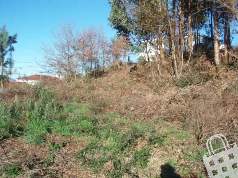 Cornes Vila Nova De Cerveira terrain picture 79493