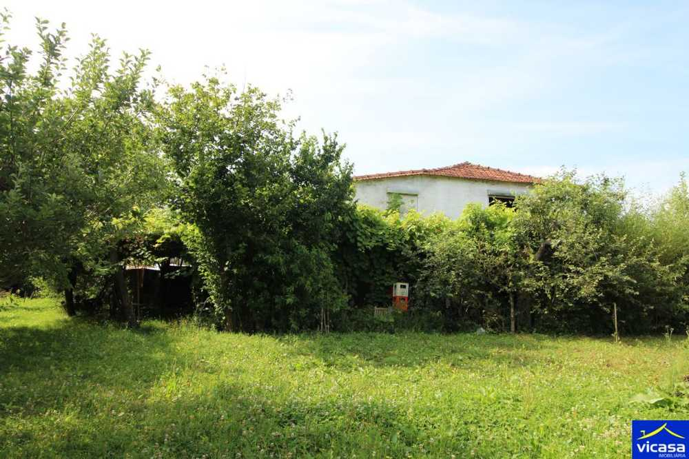Argela Caminha house picture 58550