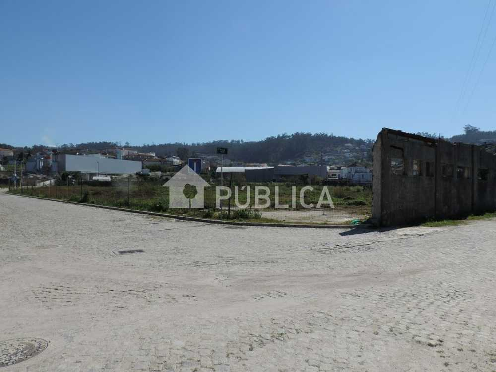 Corelo Paredes De Coura terrain picture 58259