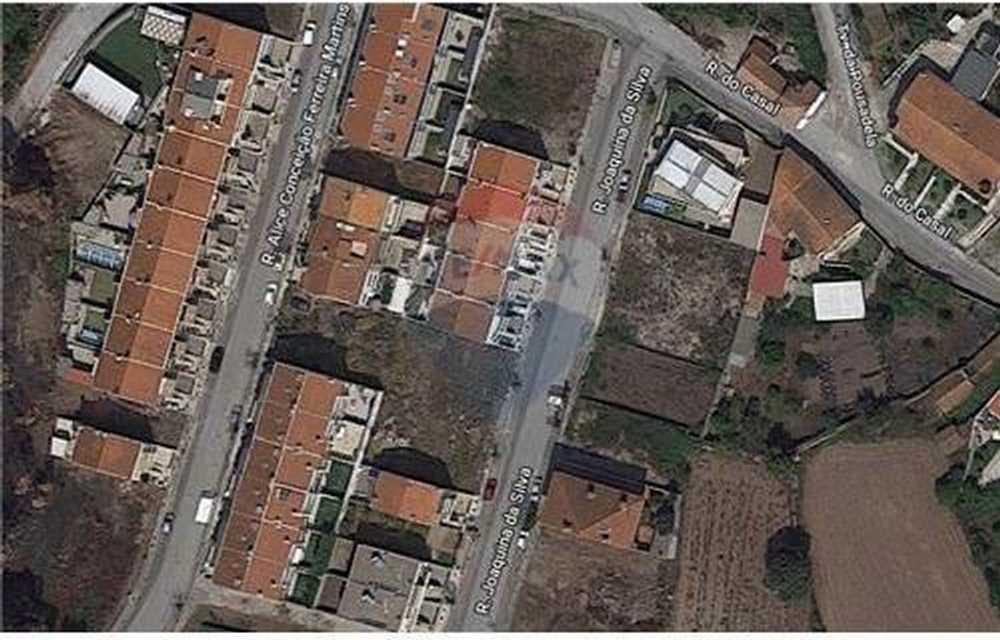 São Romão do Coronado Trofa terrain picture 62495