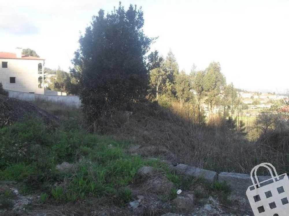 Joane Vila Nova De Famalicão terrain picture 77274