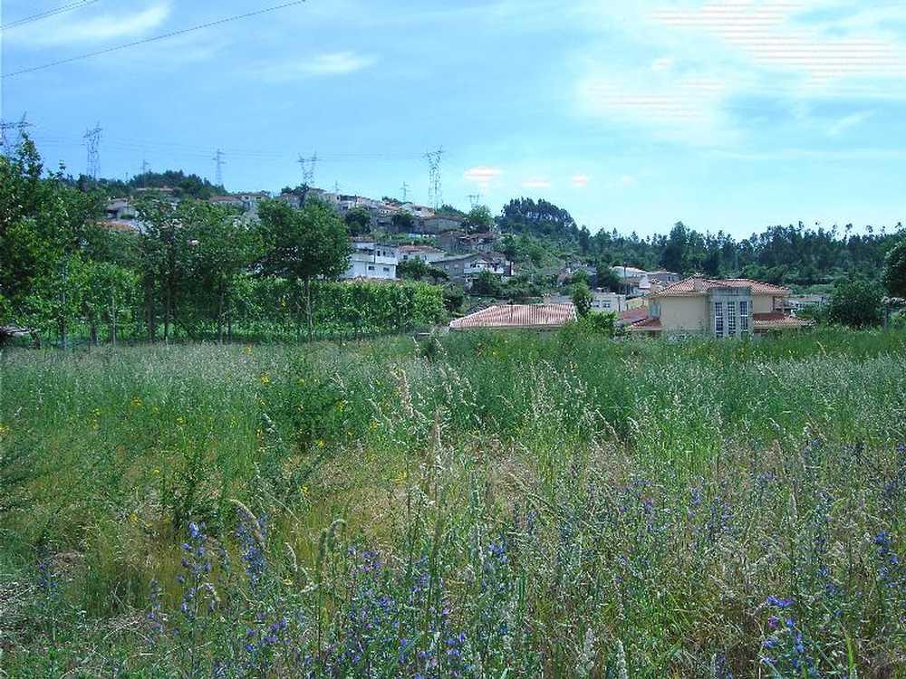 Pinheiro Guimarães terrain picture 57329