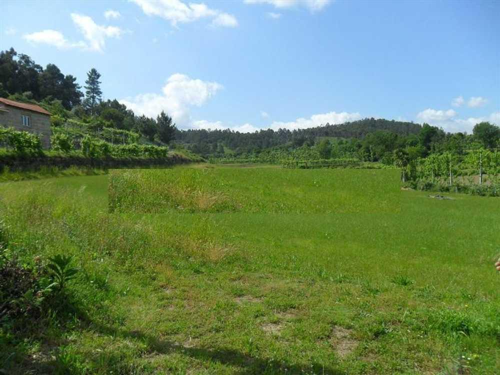 Gominhães Guimarães terrain picture 57234