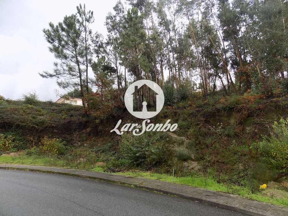 Brufe Vila Nova De Famalicão terrain picture 56633