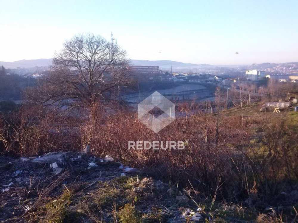 Gondar Guimarães terrain picture 68624
