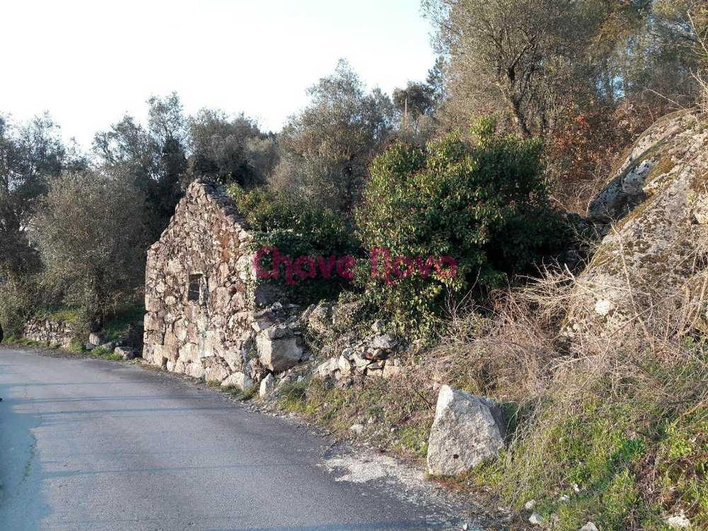 Atei Mondim De Basto terrain picture 67460
