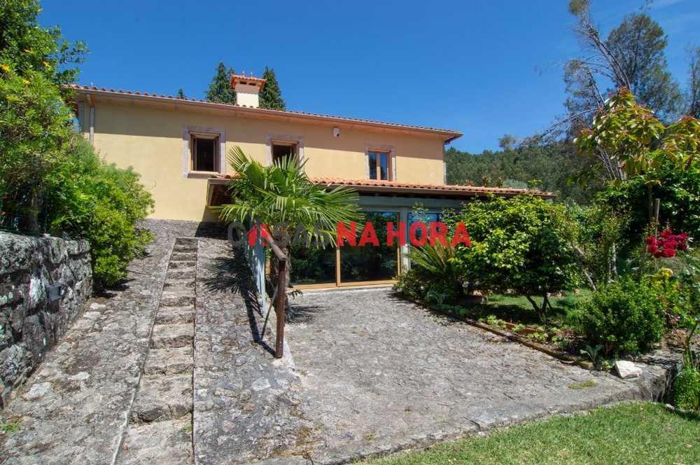 Cachadinha Paredes De Coura house picture 85594