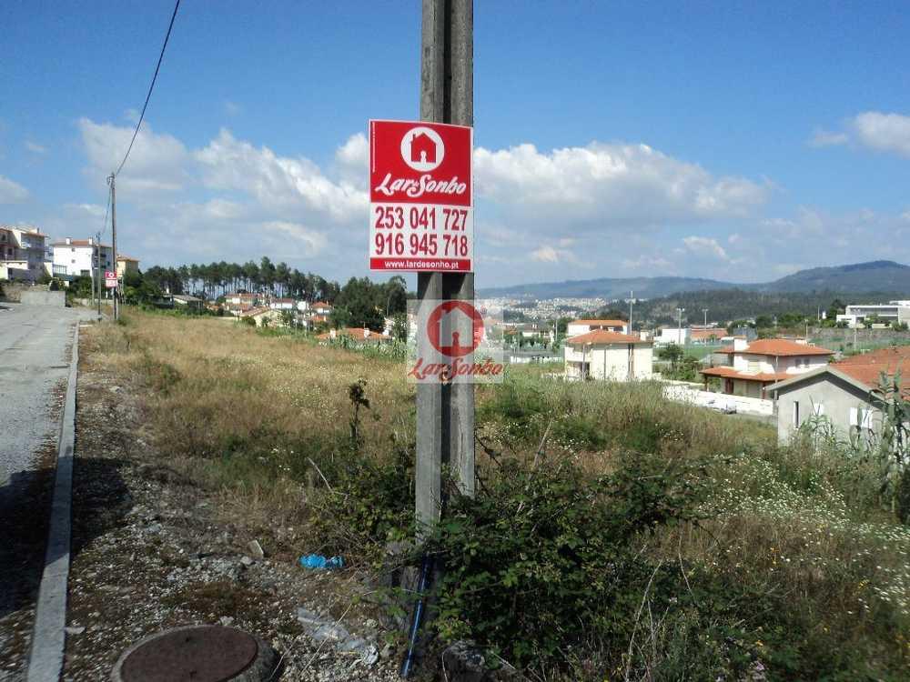 Aveleda Bragança terrain picture 88499
