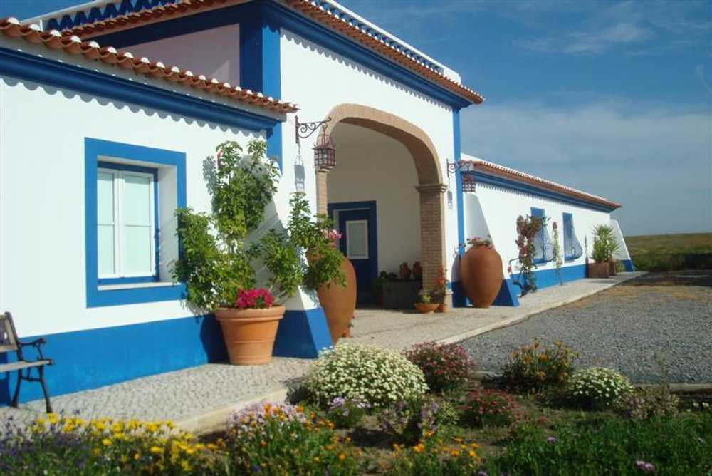 Canhestros Ferreira Do Alentejo house picture 88903