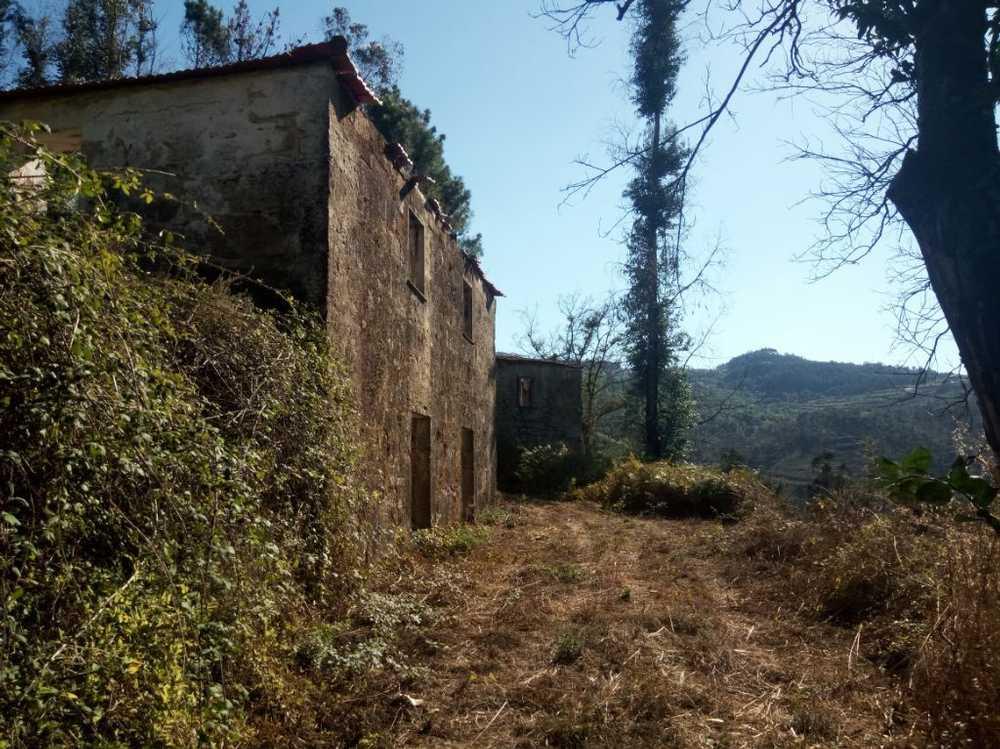 Paços de Gaiolo Marco De Canaveses house picture 89454