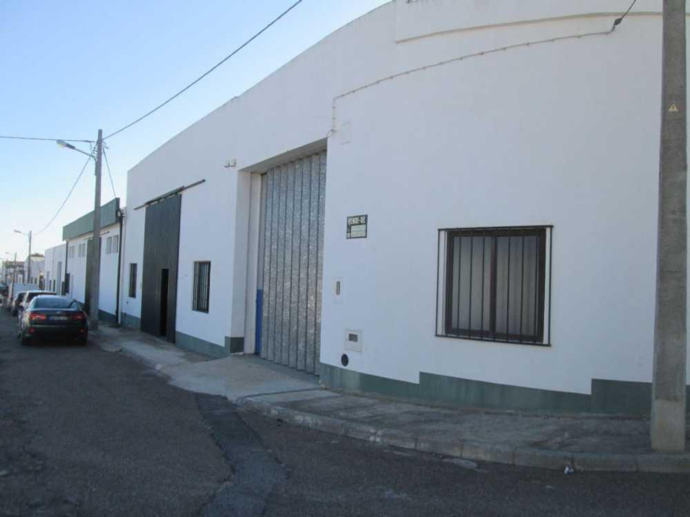 Campo Maior Campo Maior Haus Bild 87362