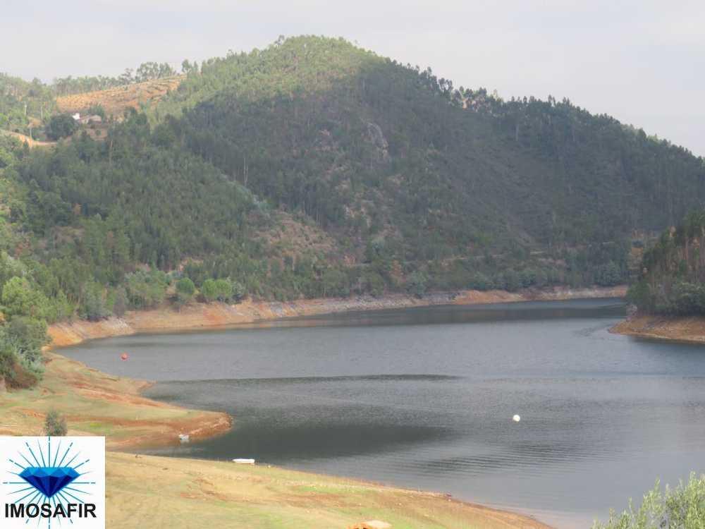 Arega Figueiró Dos Vinhos terrain picture 89386