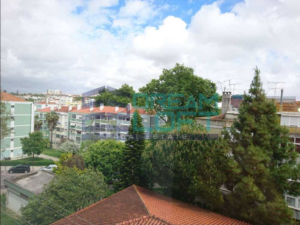 Benfica Torres Vedras apartment picture 89549