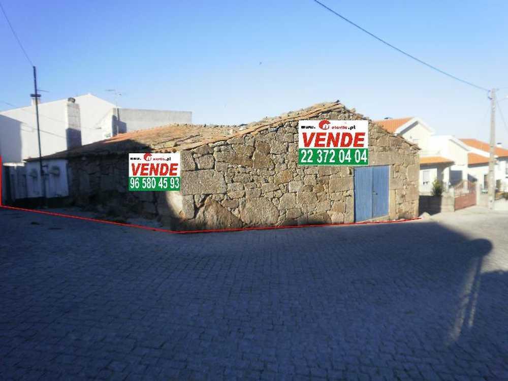 Fonte Longa Mêda casa foto #request.properties.id#