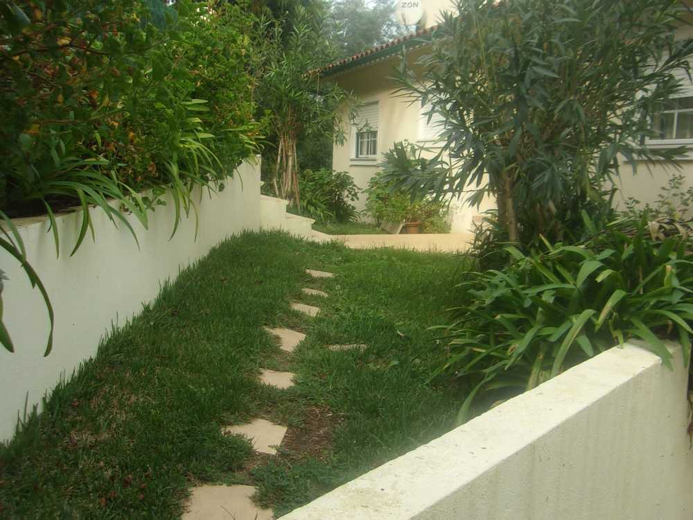 Penacova Penacova house picture 89575