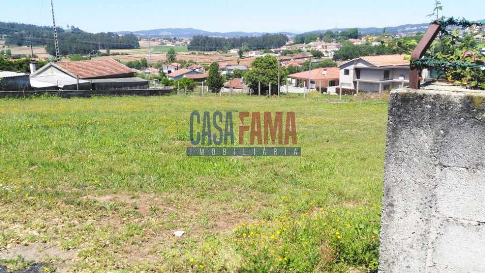 Cavalões Vila Nova De Famalicão terrain picture 86412