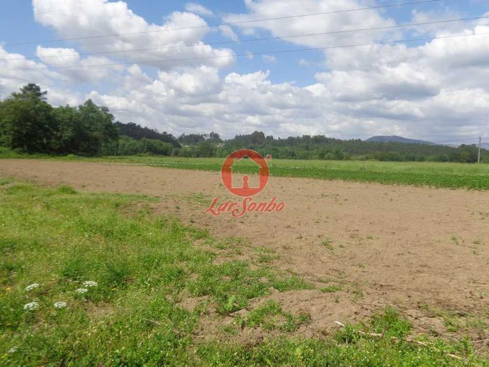 Quinta da Seara Bragança terrain picture 88454