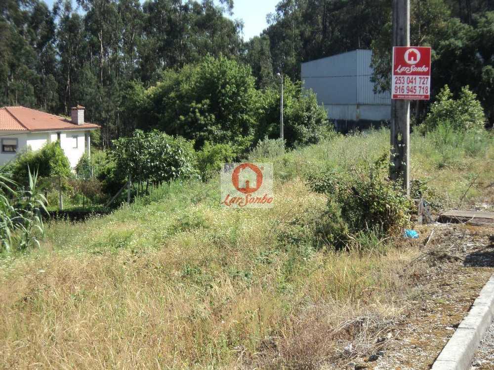 Aveleda Bragança terrain picture 88498