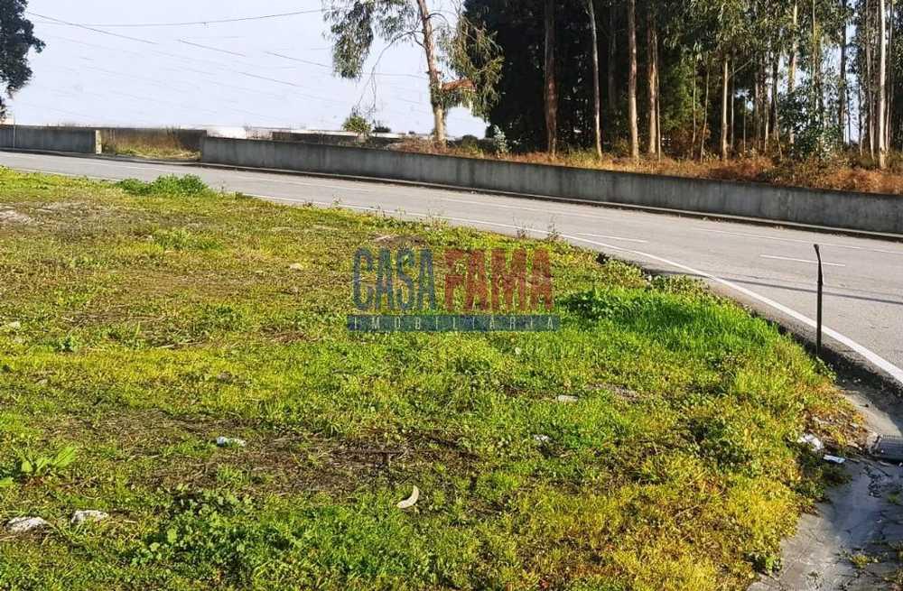 Lousado Vila Nova De Famalicão terrain picture 86393