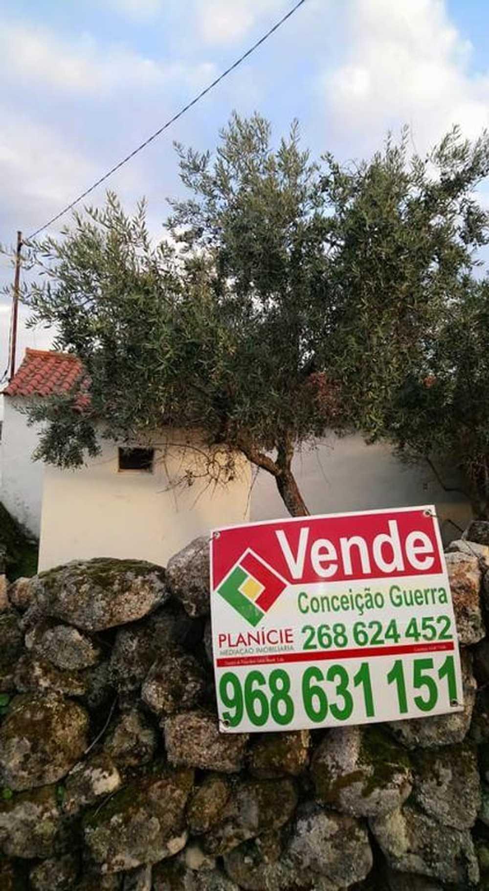 Santo António das Areias Marvão casa imagem 87415