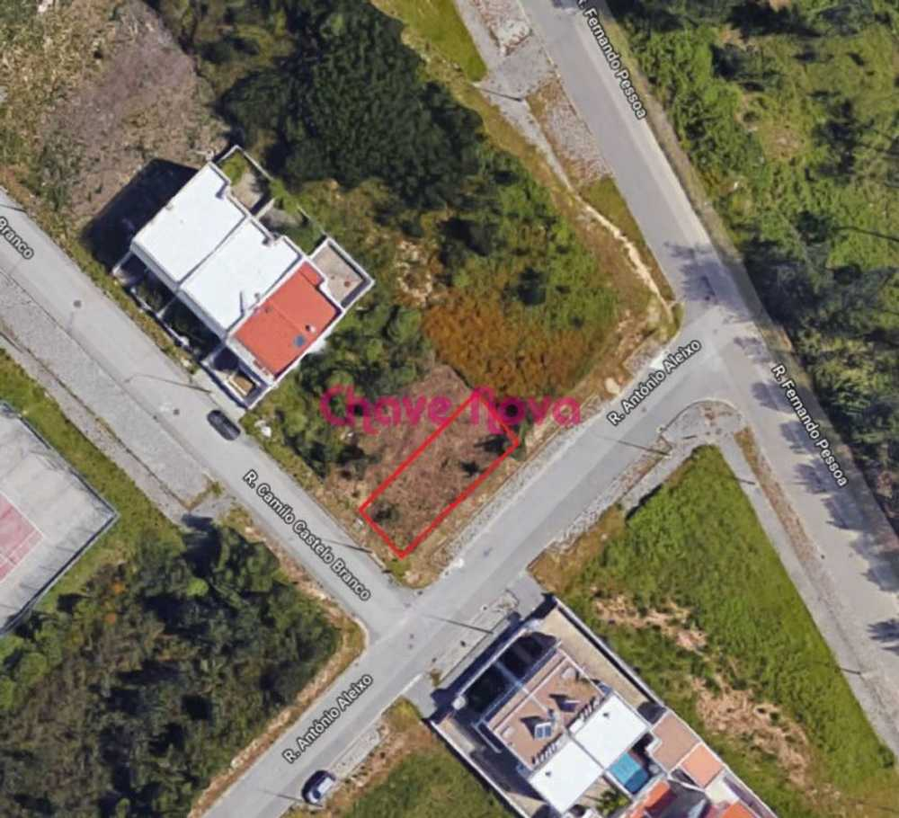 Ribeiro Santa Maria Da Feira terrain picture 90891