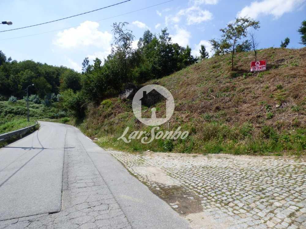 Calvos Guimarães terrain picture 93085