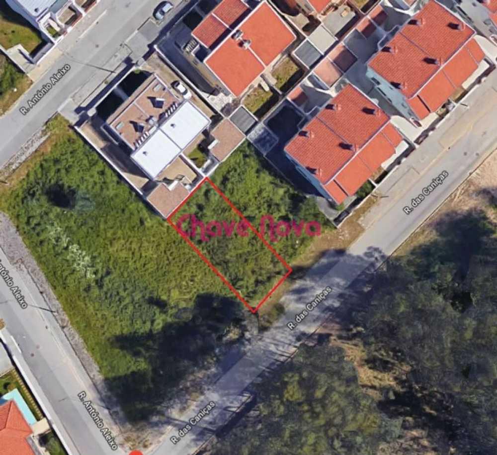 Fafião Santa Maria Da Feira terrain picture 90890