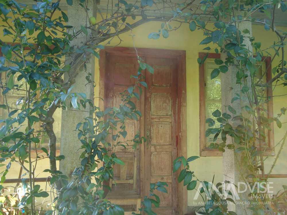 Oliveira de Frades Oliveira De Frades Haus Bild 95159