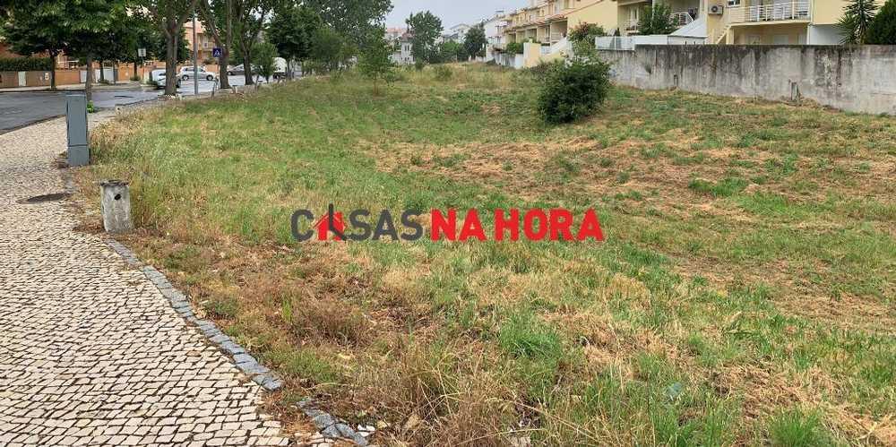 Rio Lamego terrain picture 89810