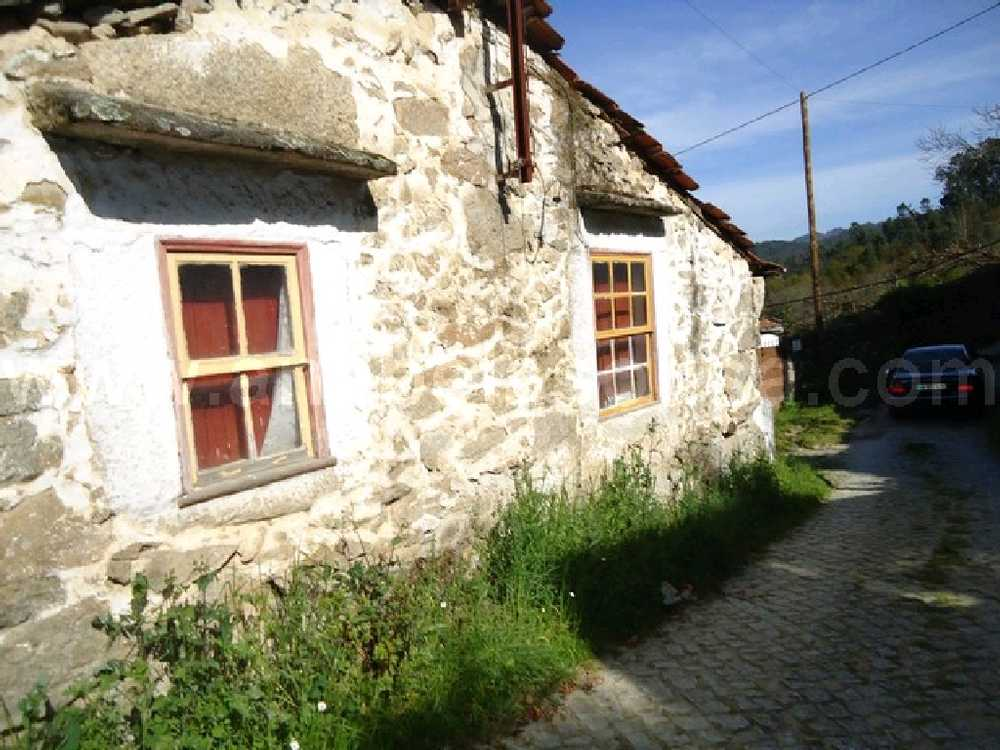 Oliveira de Frades Oliveira De Frades Haus Bild 94703