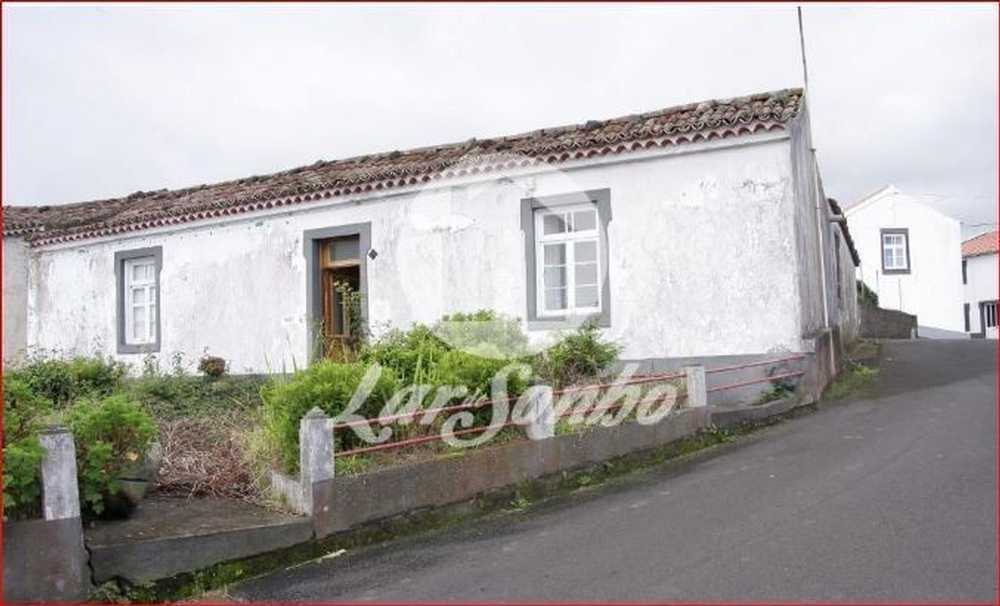 Lomba da Fazenda Nordeste house picture 90486