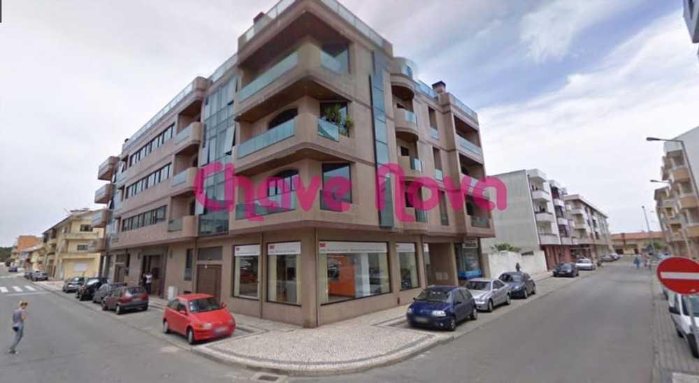 Monte da Caiada Almodôvar house picture 93376
