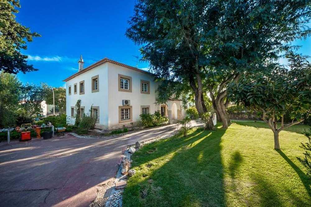 Paço Lourinhã house picture 92231