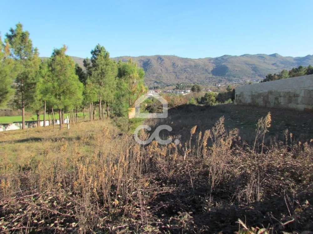 Samaiões Chaves terrain picture 91099