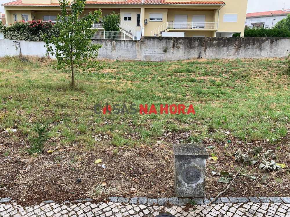 Rio Lamego terrain picture 89808