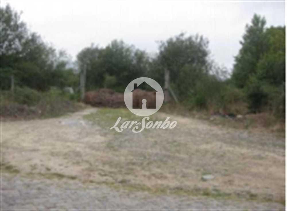 Boim Lousada terrain picture 90472