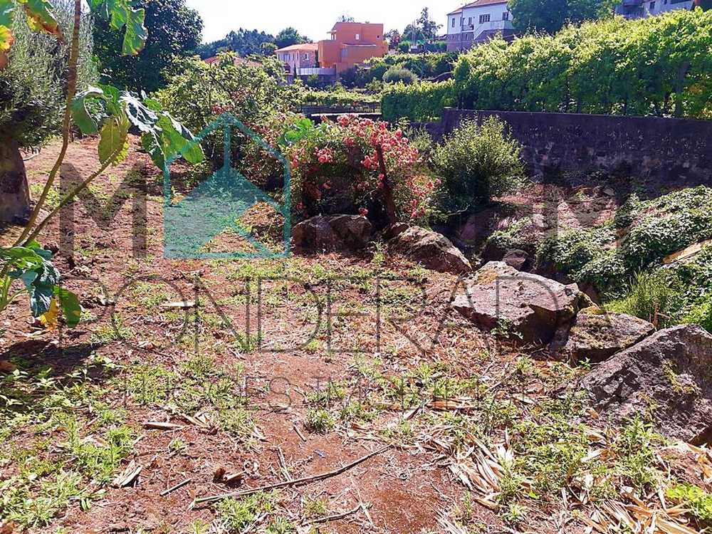 Landim Vila Nova De Famalicão terrain picture 95732