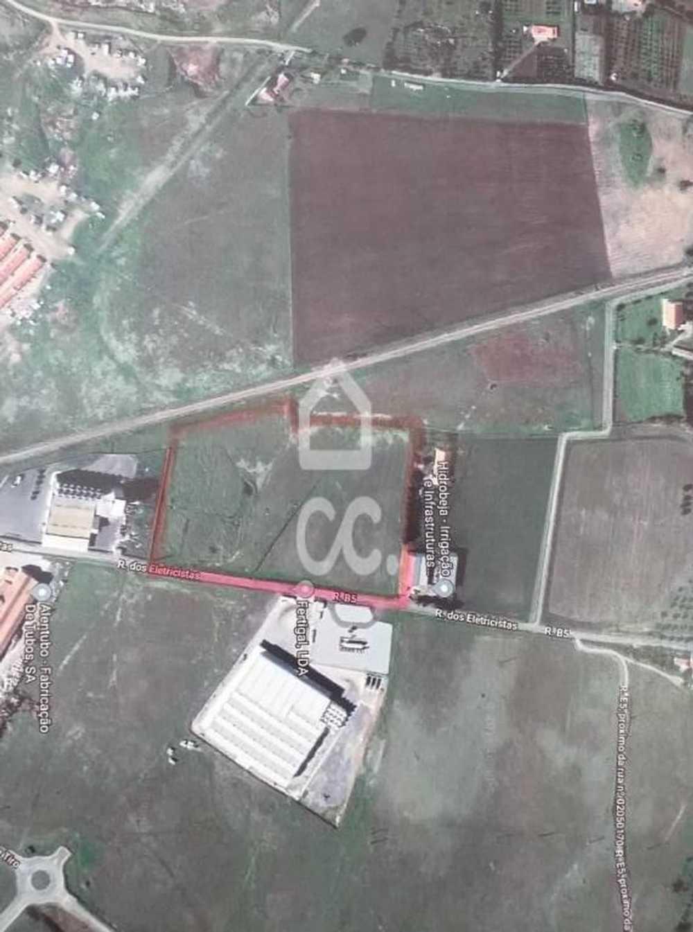 Eira Amarante terrain picture 93645