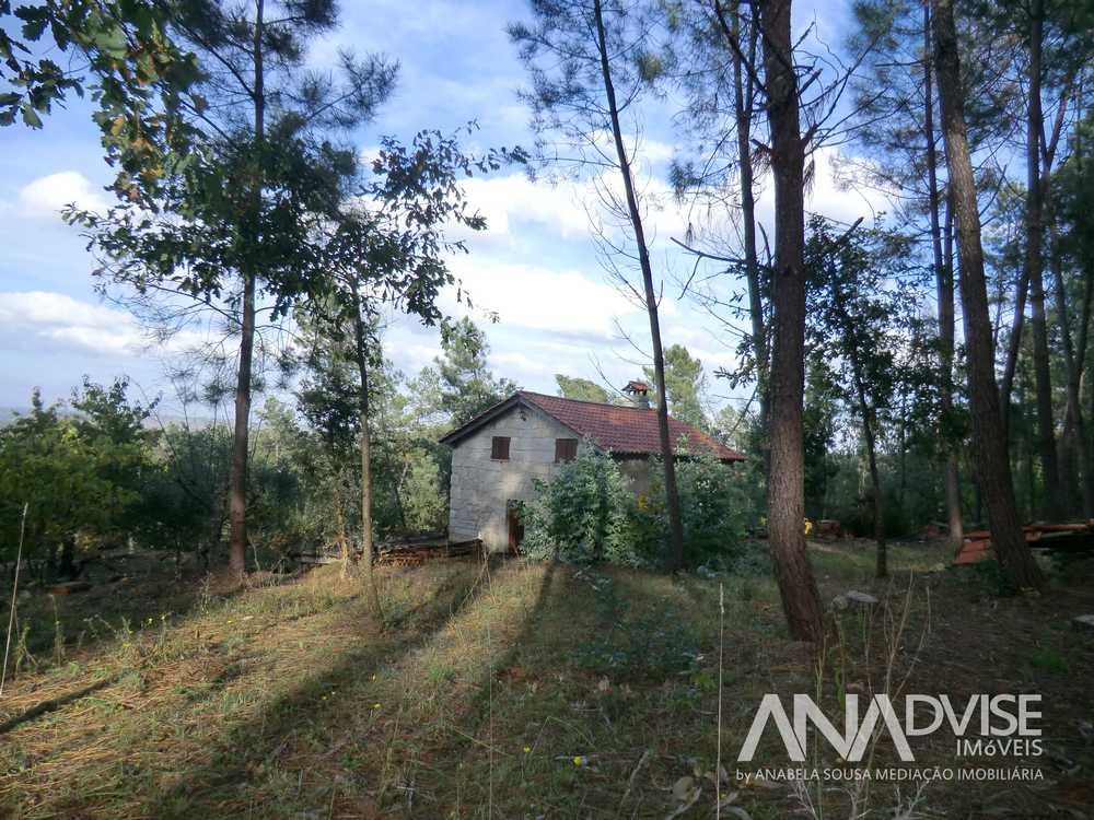 Penalva do Castelo Penalva Do Castelo house picture 95329