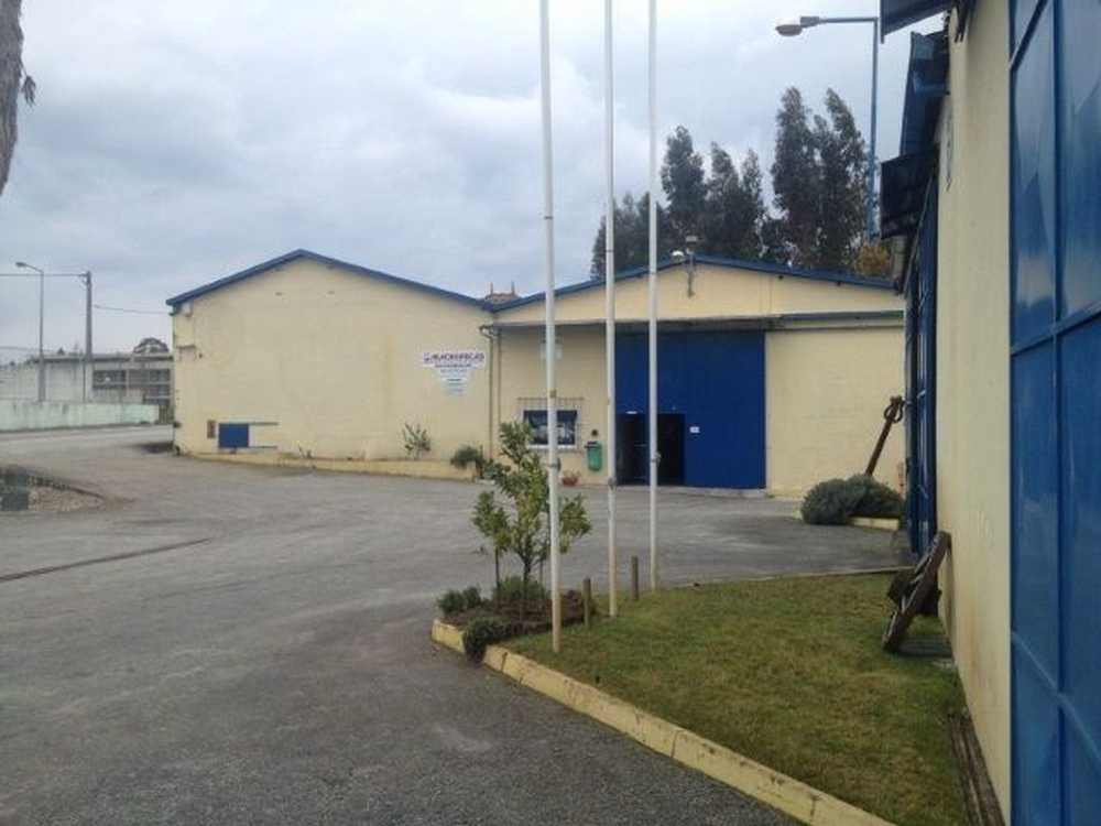 Santo André Coruche casa foto #request.properties.id#