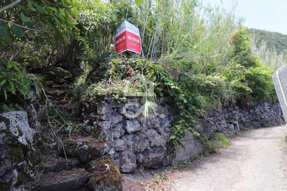 Nordeste Nordeste terrain picture 97188
