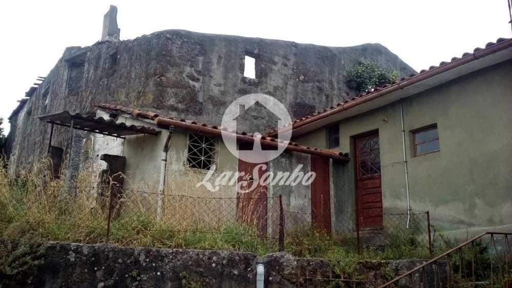Lamas Amarante Haus Bild 97621