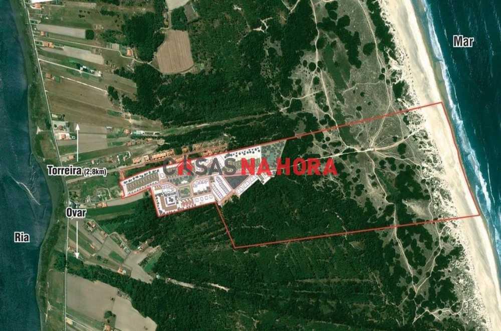 Torreira Murtosa casa imagem 96012