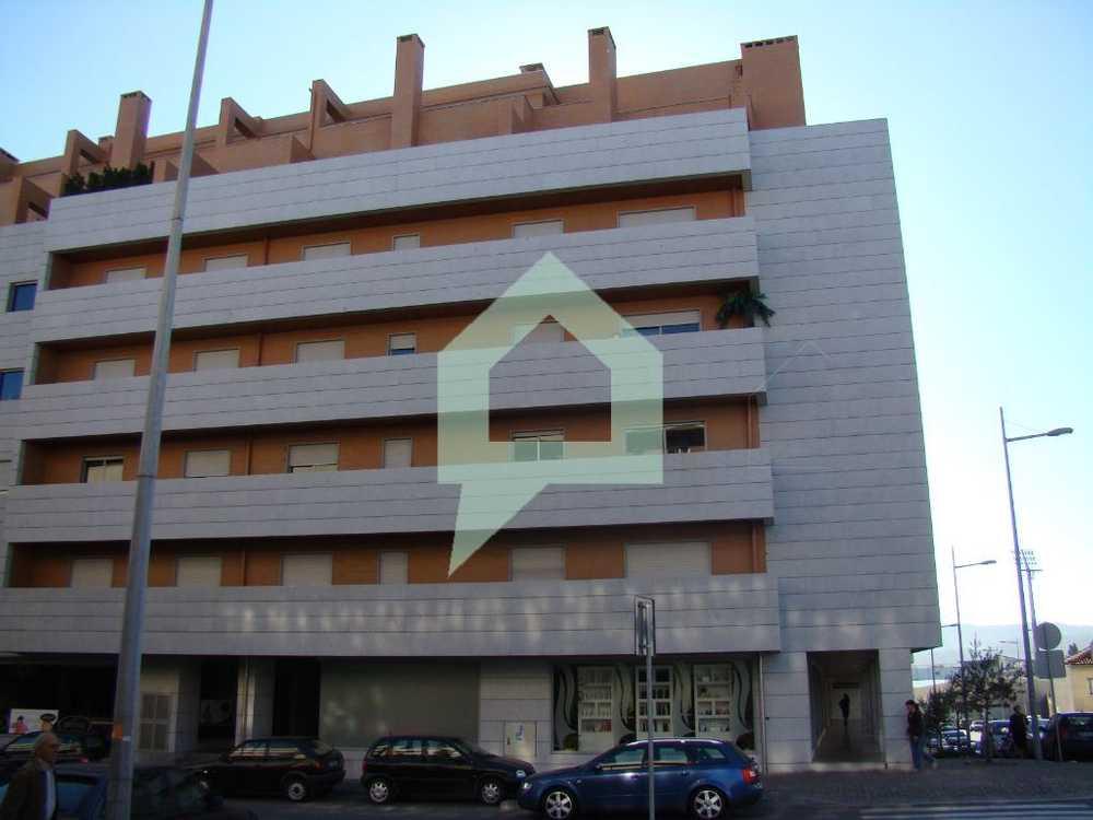 Tamel Barcelos apartment picture 98375