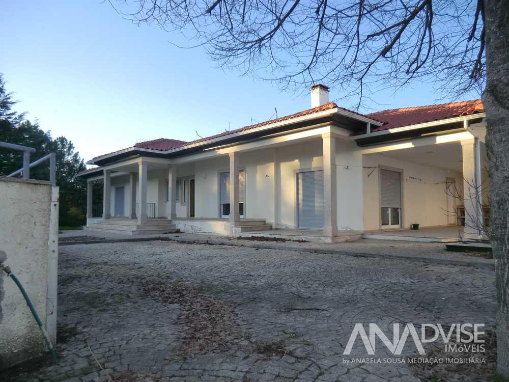 à vendre maison Viseu Viseu 1