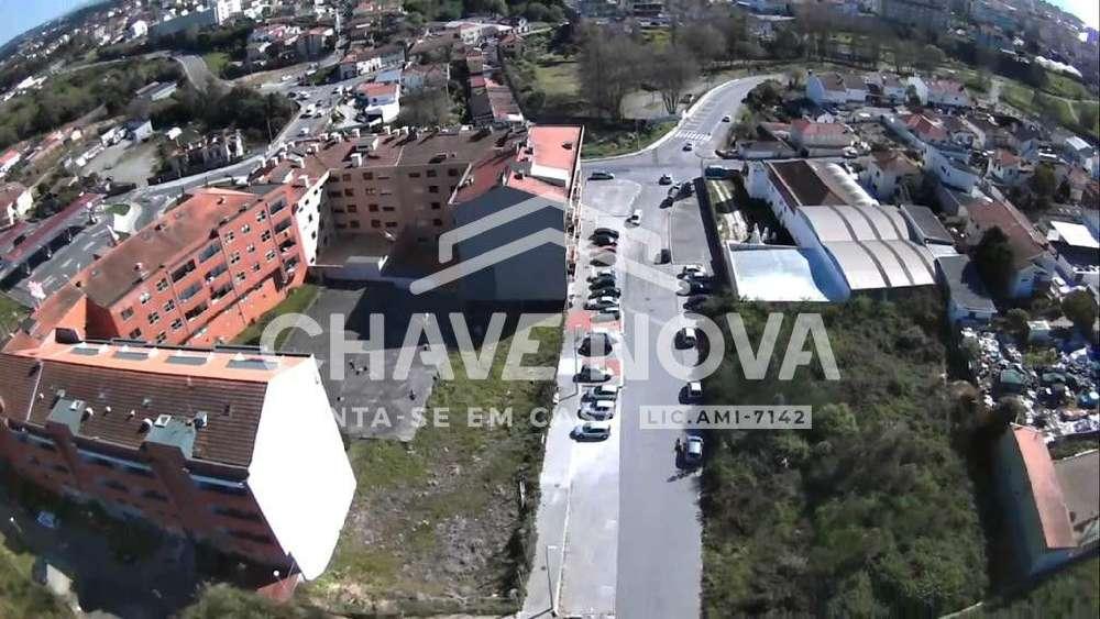 Espinho Arouca terrain picture 149547