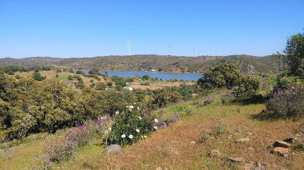 Parchal Lagoa (Algarve) terrain picture 150923